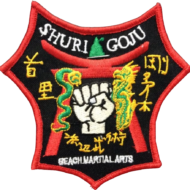 Miami Beach Martial Arts